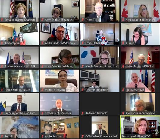 9.7.21 NATO virtual meeting