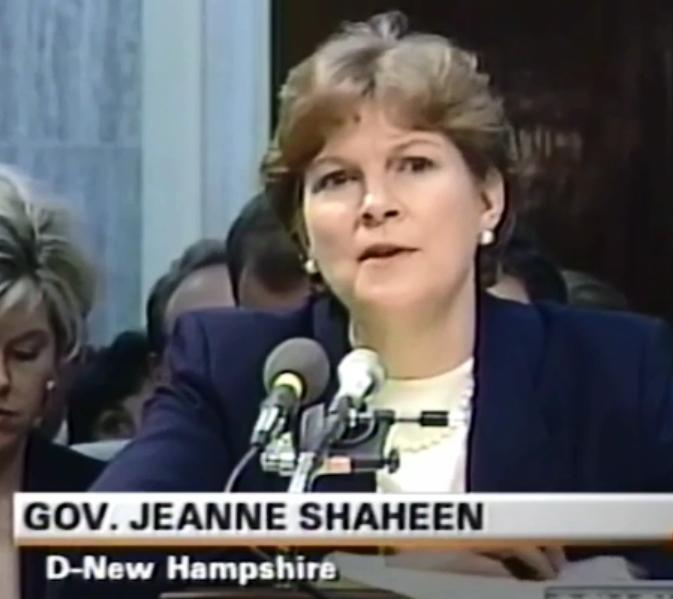 Shaheen 2002